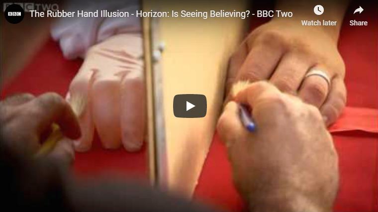 Photo of Body Transfer Illusion – Rubber Hand Illusion